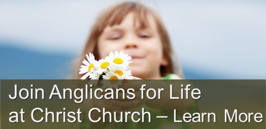 Join Anglicans for Life