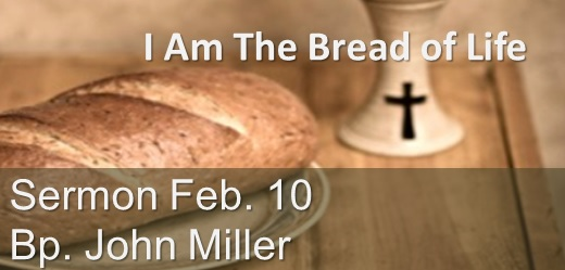 I Am the Bread of Life Sermon February 10